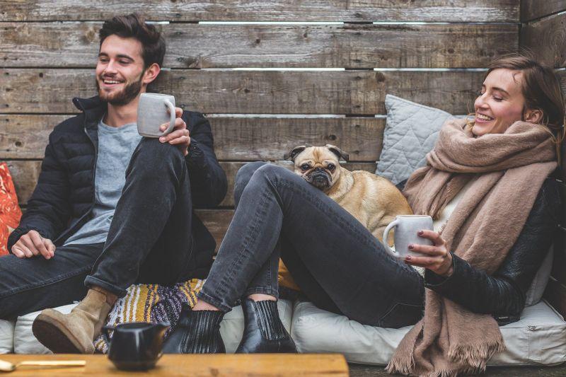 El alojamiento ideal para mascotas